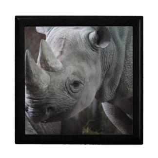 Black Rhinoceros Photo Gift Box
