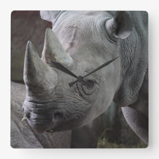 Black Rhinoceros Photo Square Wall Clock