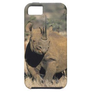 Black Rhinocerous, (Diceros bicornis), Northern iPhone 5 Covers