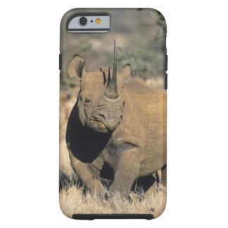 Black Rhinocerous, (Diceros bicornis), Northern Tough iPhone 6 Case