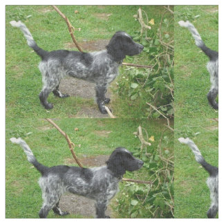 black roan english_cocker_spaniel full.png fabric