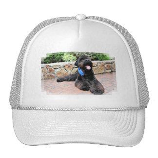 Black Russian Terrier - Vader Hat