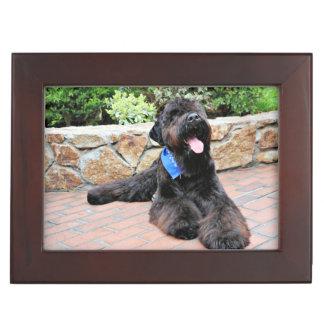 Black Russian Terrier - Vader Keepsake Box
