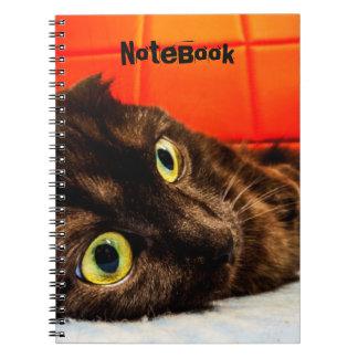 Black Scottish Fold Cat Notebooks