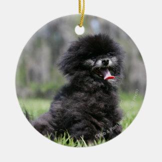 Black Senior Pomeranian Christmas Ornament