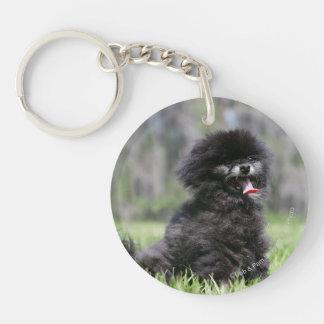 Black Senior Pomeranian Double-Sided Round Acrylic Key Ring
