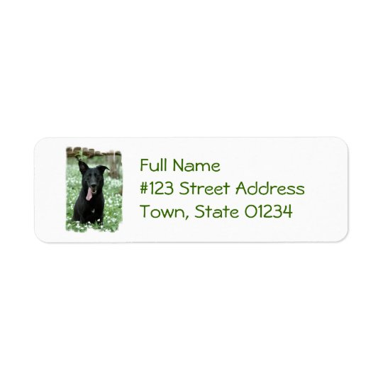 Black Shepherd Mailing Labels
