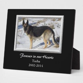 Black Silver Frame Pet Memorial Template