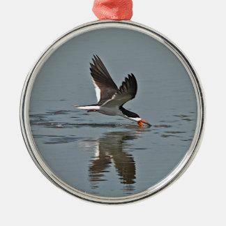 Black Skimmer Photo Silver-Colored Round Decoration