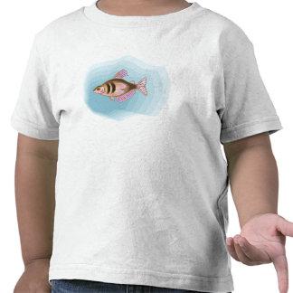 Black Skirt Tetra Fish Shirt