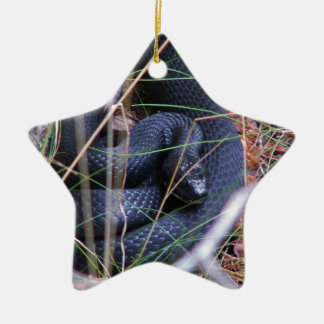 Black snake christmas ornament