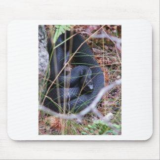 Black snake mouse mat