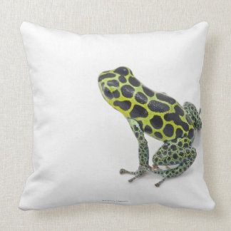 Black Spotted Green Poison Dart Frog Cushion