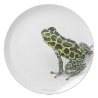 Black Spotted Green Poison Dart Frog Dinner Plates
