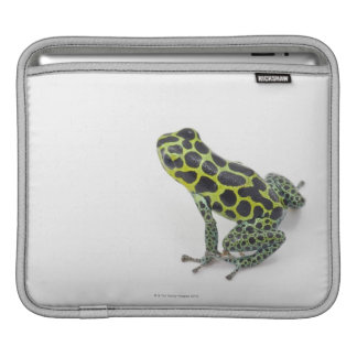 Black Spotted Green Poison Dart Frog iPad Sleeve
