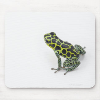 Black Spotted Green Poison Dart Frog Mouse Mat