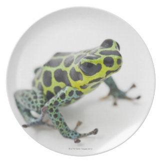Black Spotted Green Poison Dart Frog Plates
