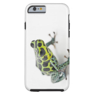 Black Spotted Green Poison Dart Frog (Ranitomeya Tough iPhone 6 Case