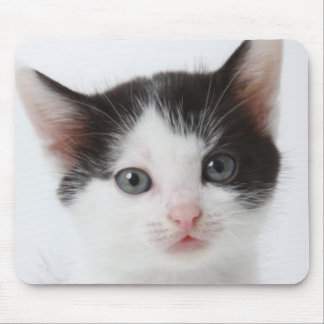 Black Spotted Kitten Mouse Pad