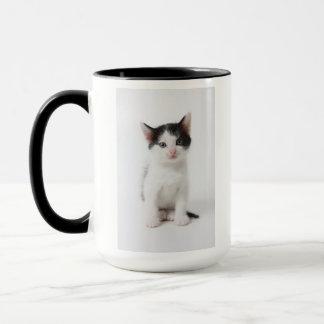 Black Spotted Kitten Mug