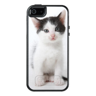 Black Spotted Kitten OtterBox iPhone 5/5s/SE Case