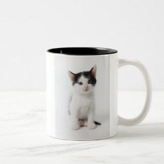 Black Spotted Kitten Two-Tone Coffee Mug