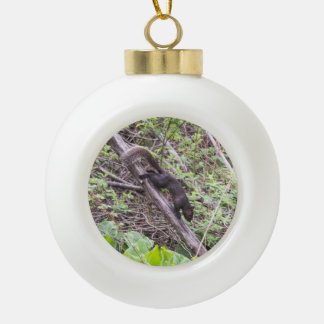 Black Squirrel Ceramic Ball Christmas Ornament