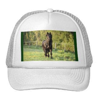 Black Stallion Cap