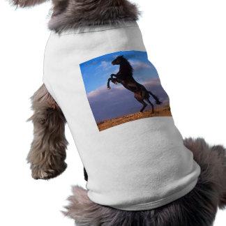 Black Stallion Pet Clothes