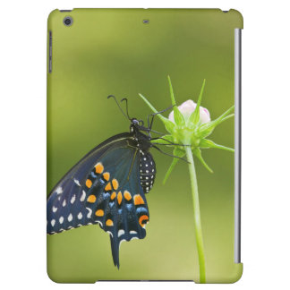 Black Swallowtail butterfly Cover For iPad Air