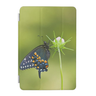 Black Swallowtail butterfly iPad Mini Cover