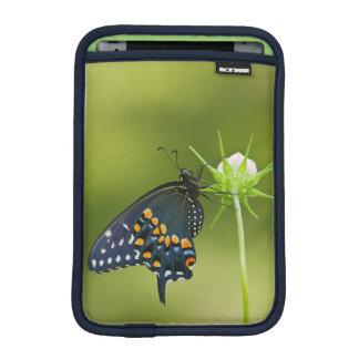 Black Swallowtail butterfly iPad Mini Sleeve