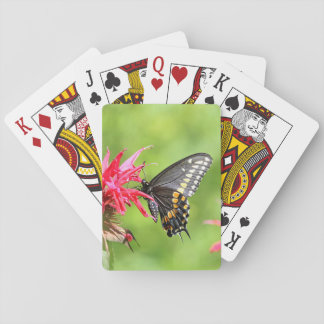 Black swallowtail butterfly playing cards
