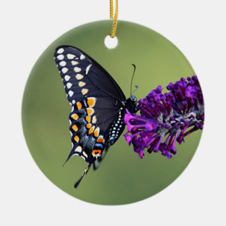 Black swallowtail butterfly profile round ceramic decoration