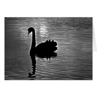Black Swan - Australian Native Animal Greeting Card