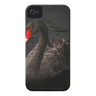 Black Swan Case-Mate iPhone 4 Cases