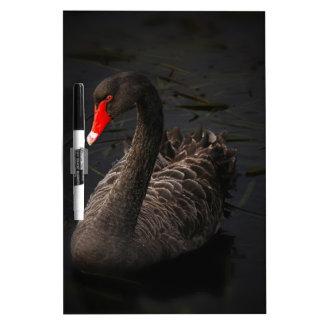 Black Swan Dry Erase Whiteboard