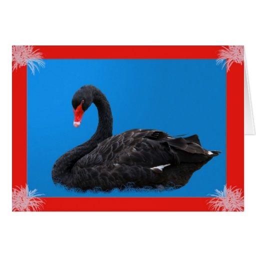Black Swan in Blue Card