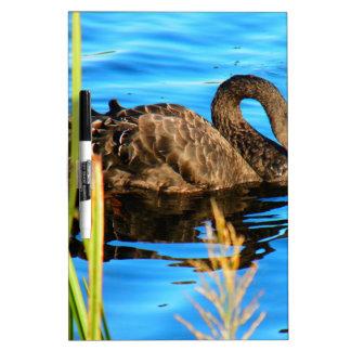 Black Swan O'brein's Bridge, Ireland Dry Erase Board