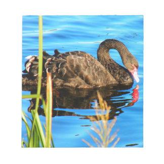 Black Swan O'brein's Bridge, Ireland Notepad
