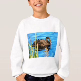 Black Swan O'brein's Bridge, Ireland Sweatshirt