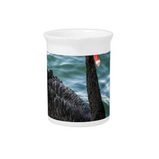 Black Swan Pitcher