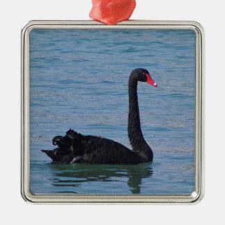 Black Swan Silver-Colored Square Decoration