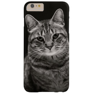 Black Tabby Kitten Barely There iPhone 6 Plus Case