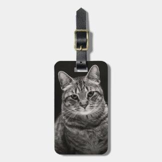 Black Tabby Kitten Luggage Tag