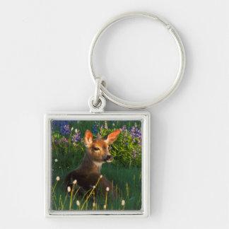 Black-tail Deer Fawn, alpine wildflowers Key Ring
