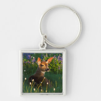 Black-tail Deer Fawn, alpine wildflowers Silver-Colored Square Key Ring