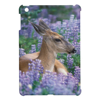 Black-tailed deer, doe resting in siky lupine, iPad mini covers