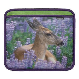 Black-tailed deer, doe resting in siky lupine, iPad sleeve