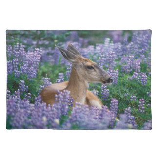 Black-tailed deer, doe resting in siky lupine, placemat